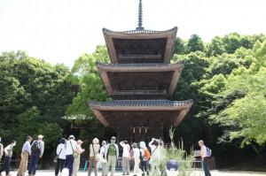 五流尊瀧院三重塔を望む(JPEG)